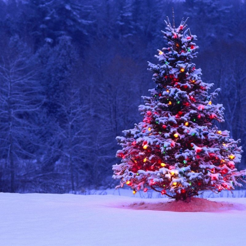 10 New Christmas Winter Scenes Wallpaper FULL HD 1080p For PC Background 2018 free download best christmas winter wallpaper high quality backgrounds scenes png 800x800