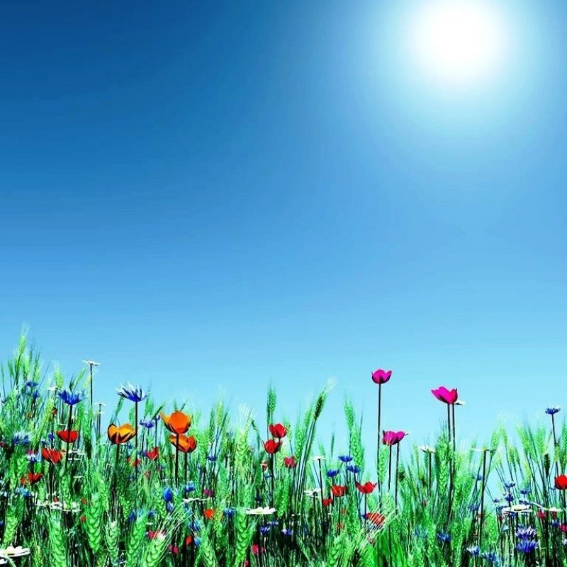 10 Best Spring Background Images Free FULL HD 1920×1080 For PC Desktop 2018 free download best d wallpapers collection moving desktop backgrounds free 1920 800x800