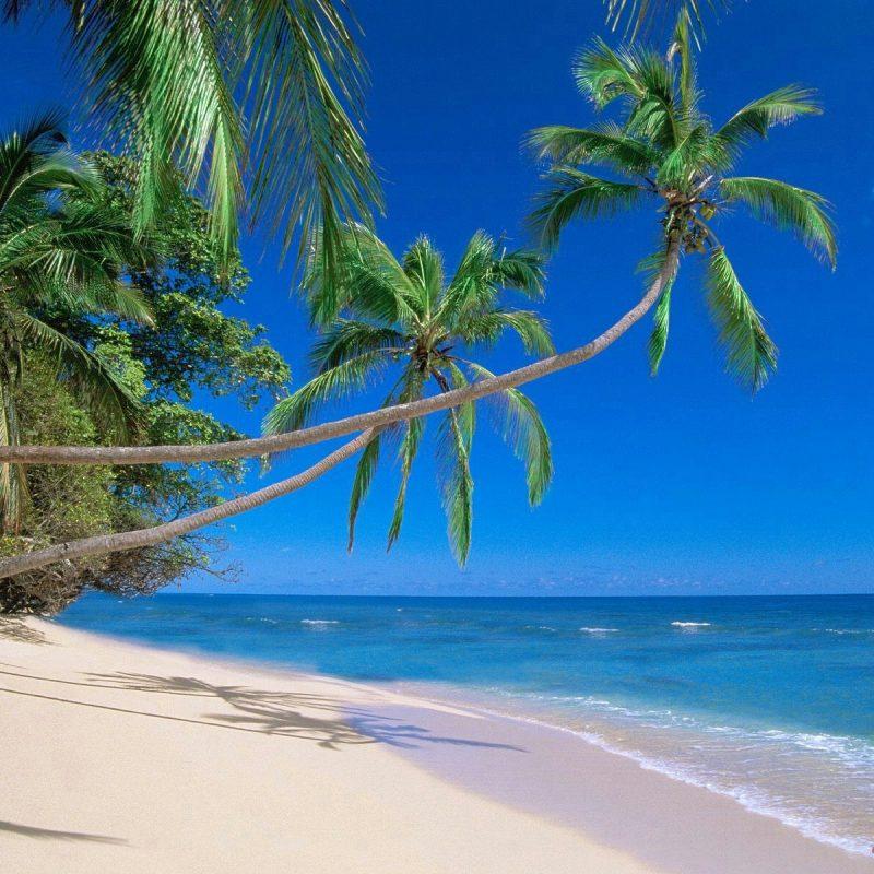 10 Latest Pics Of Hawaiian Beaches FULL HD 1080p For PC Desktop 2020 free download best hawaii beaches best hawaiian beaches honeymoon dream 800x800