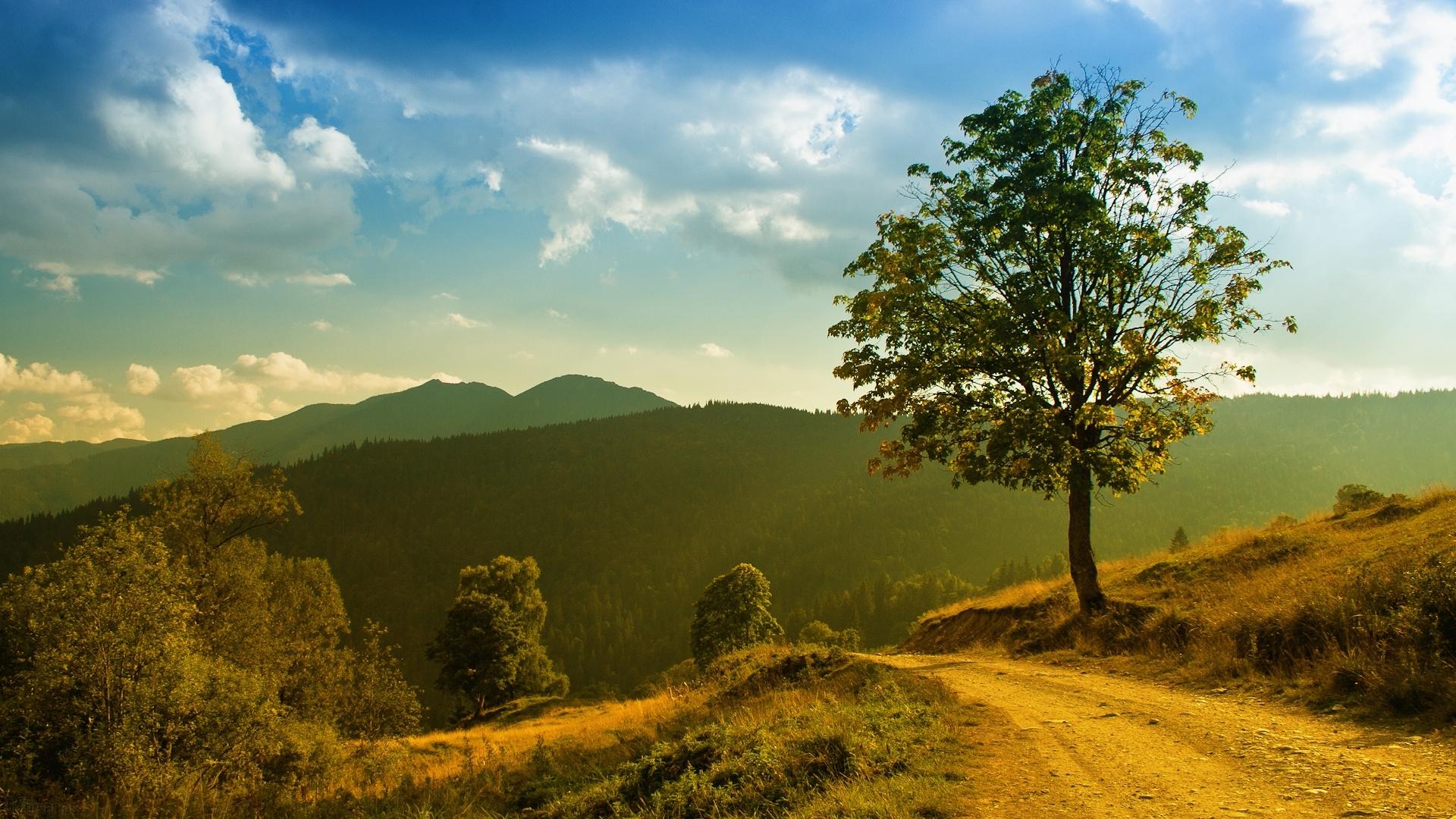 best hd nature wallpapers | wallpaper.wiki