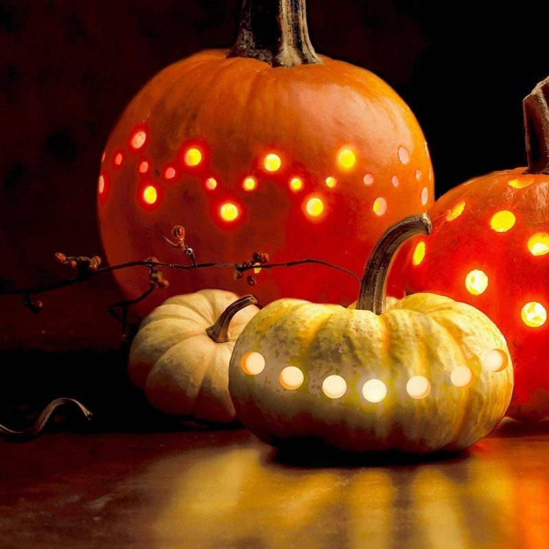 10 Most Popular Pumpkin Desktop Backgrounds Hd FULL HD 1920×1080 For PC Background 2018 free download best of pumpkin desktop wallpaper free hd wallpaper free 2018 800x800