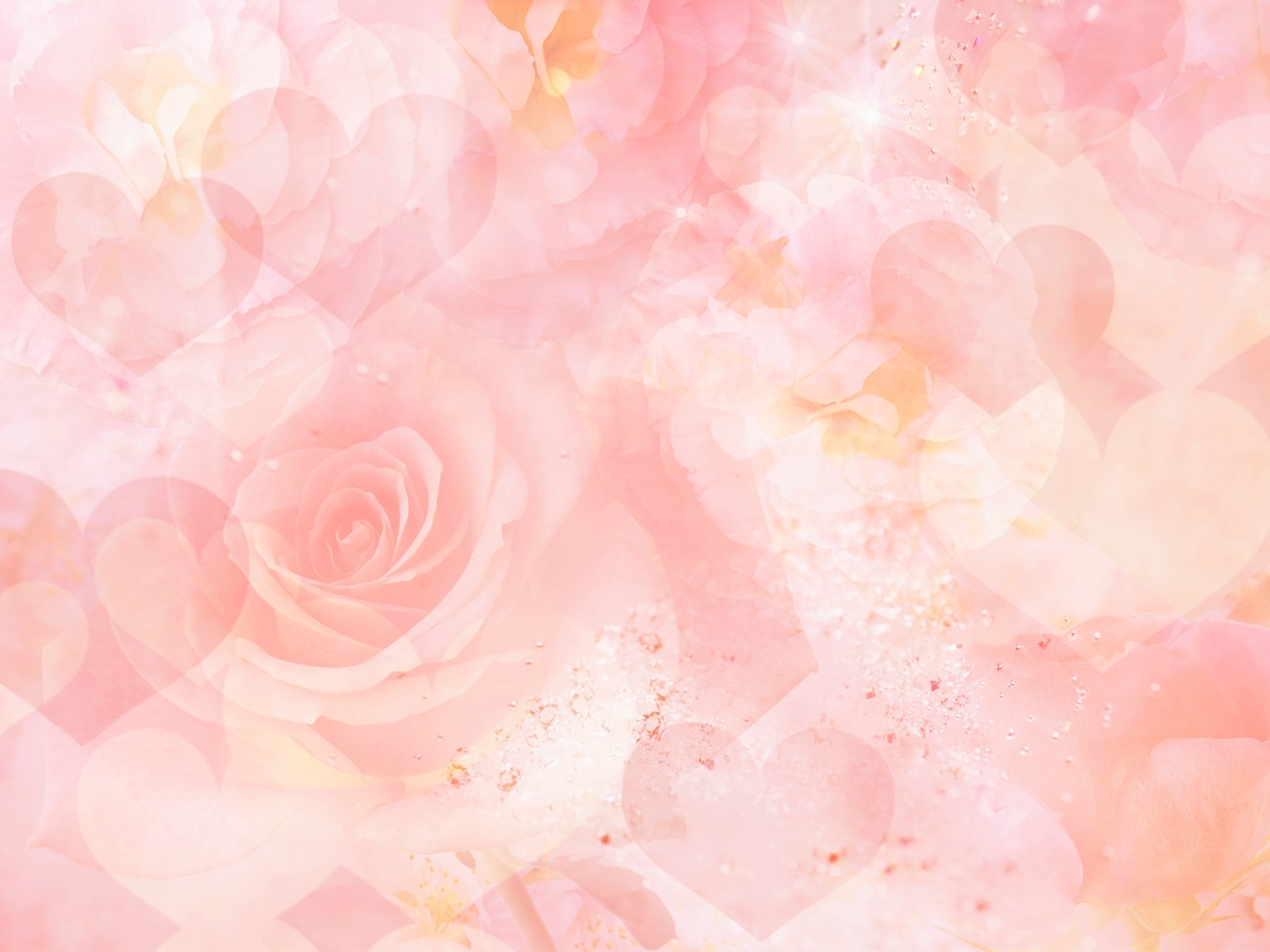 best roses background - wallpaper, high definition, high quality