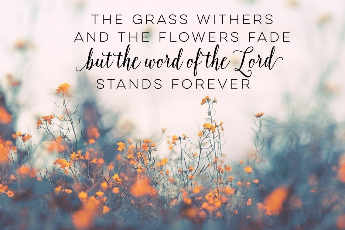bible verse desktop wallpaper | desktop wallpapers | pinterest