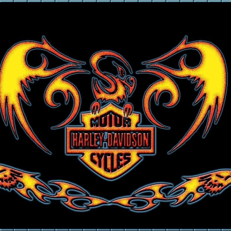 10 Latest Free Harley Davidson Wallpaper FULL HD 1080p For PC Desktop 2018 free download bike harley davidson 1920 x 1080 free harley davidson adorable 800x800