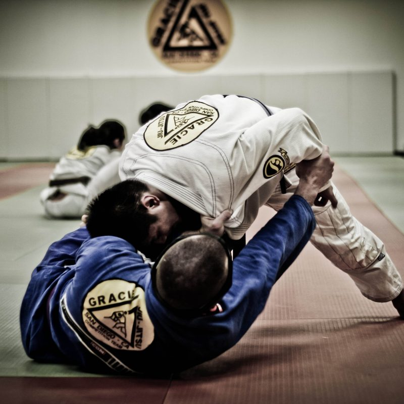 10 Best Brazilian Jiu Jitsu Wallpaper FULL HD 1080p For PC Desktop 2018 free download bjj wallpaper collection 58 800x800