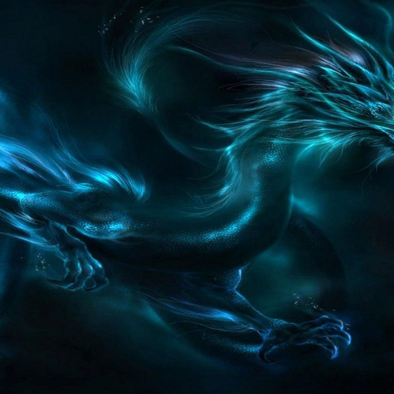 10 Best Black And Blue Dragon Wallpaper FULL HD 1080p For PC Background 2020 free download black and blue dragon high resolution wallpapers cool red eyes 800x800