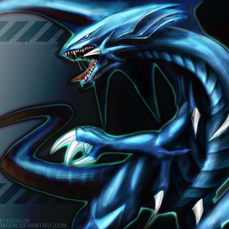 10 Best Black And Blue Dragon Wallpaper FULL HD 1080p For PC Background 2020 free download black and blue dragon wallpapers wallpaper cave 800x800