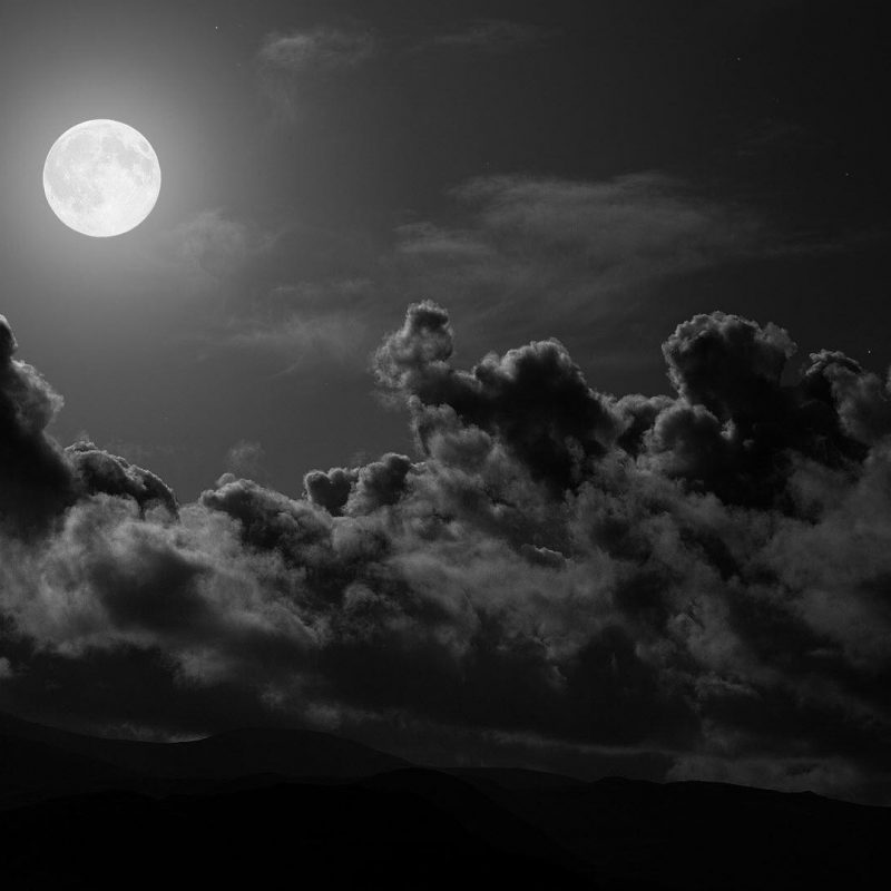 10 Most Popular Black And White 1080P Wallpaper FULL HD 1080p For PC Background 2020 free download black and white 1080p wallpaper 73 images 800x800