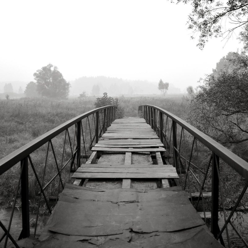 10 Most Popular Black And White Nature Background FULL HD 1080p For PC Desktop 2020 free download black and white bridge nature wallpaper computer background 800x800