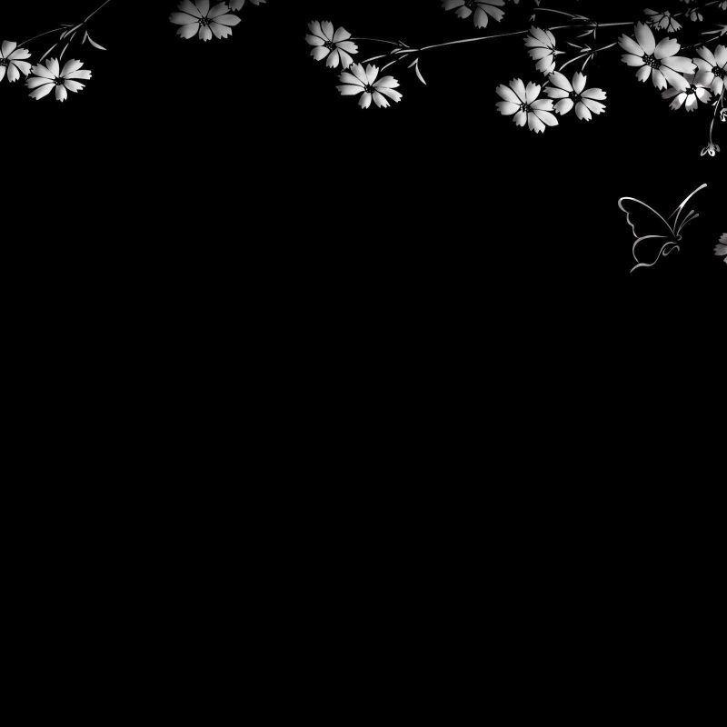 10 Most Popular Desktop Wallpaper Black And White FULL HD 1920×1080 For PC Background 2018 free download black and white desktop backgrounds wallpaper cave 800x800