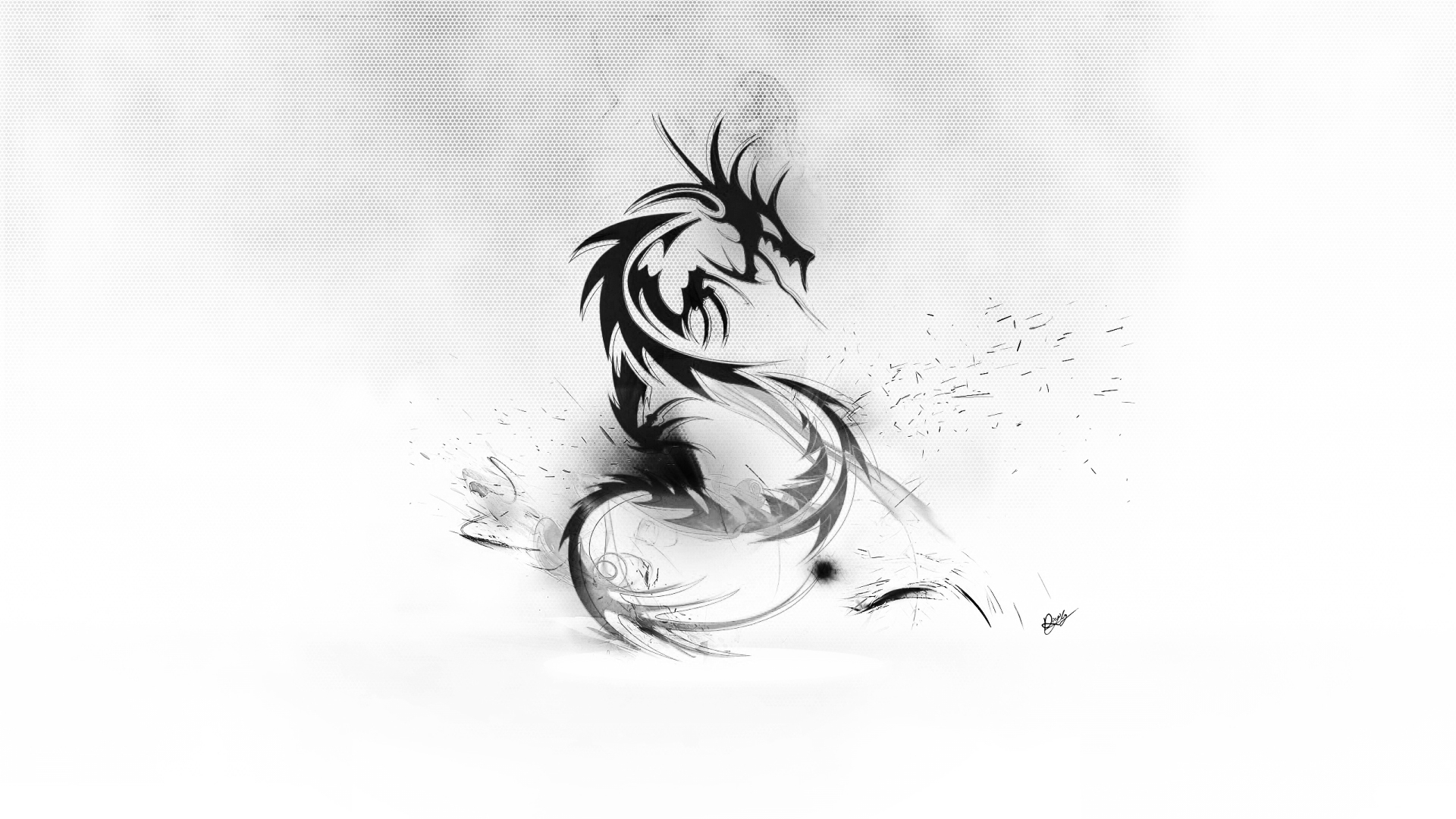black and white dragon gallery 569187330 wallpaper for free