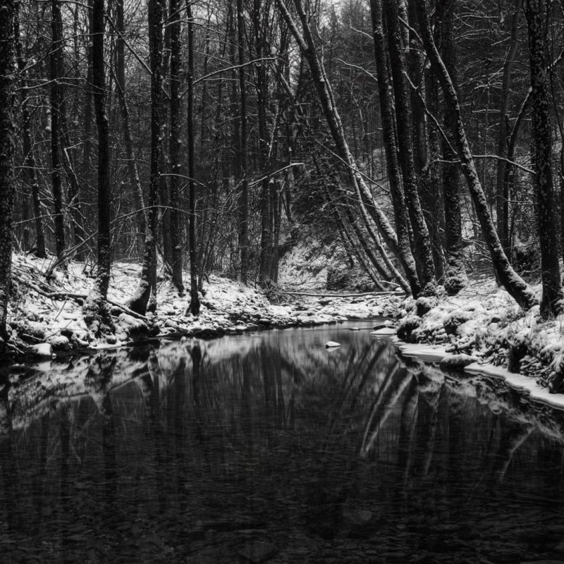 10 Most Popular Black And White Nature Background FULL HD 1080p For PC Desktop 2020 free download black and white nature background 272584 walldevil 800x800