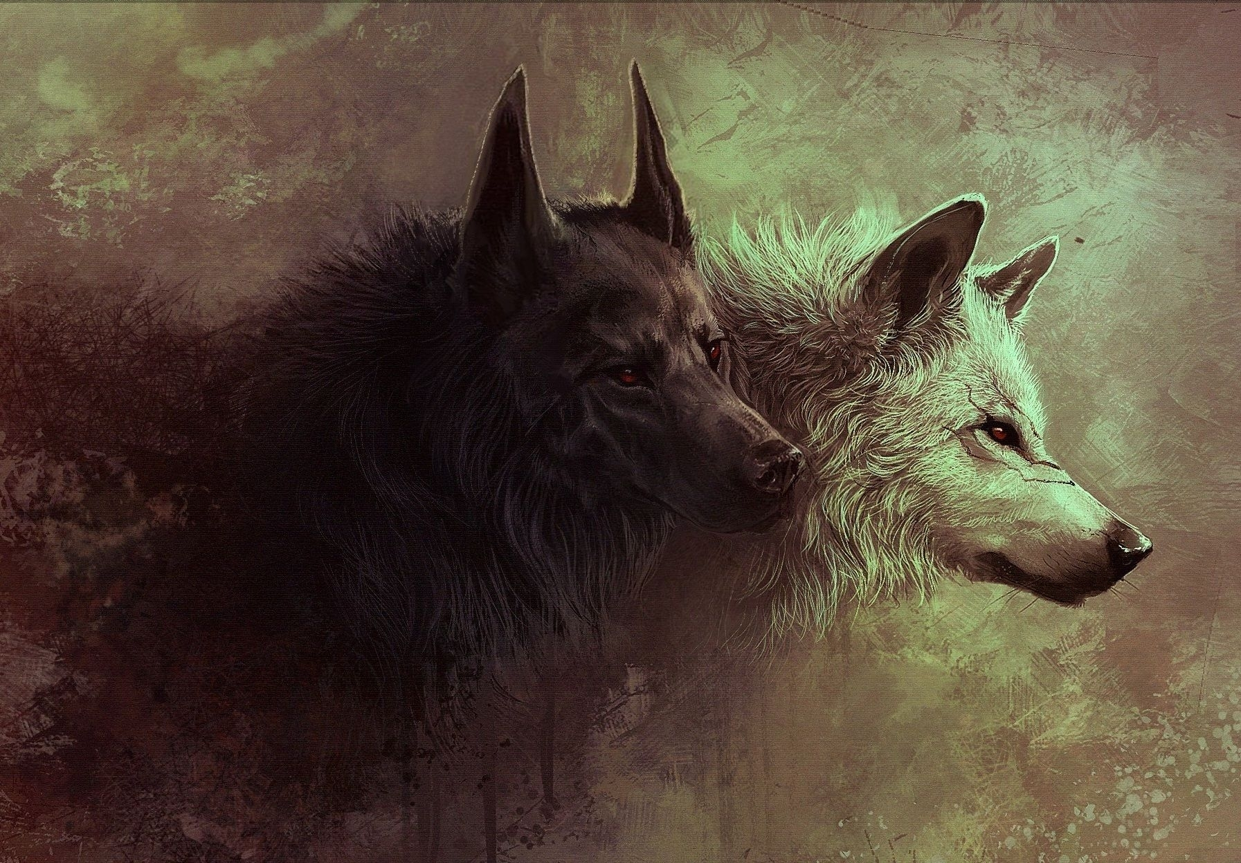 black and white wolves wallpaper hd background | wallpapers