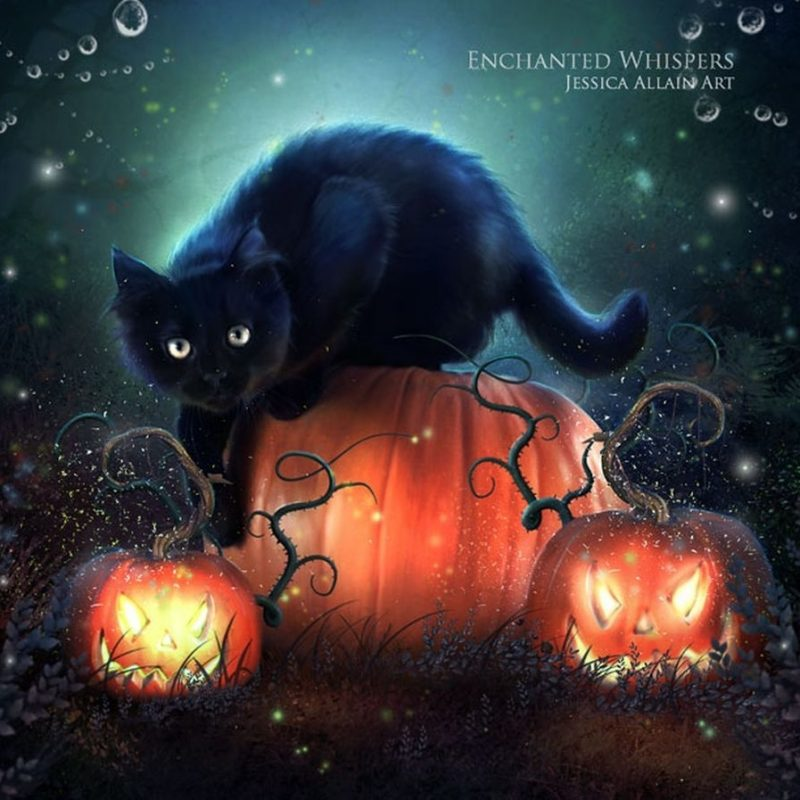 10 New Halloween Black Cats Wallpaper FULL HD 1920×1080 For PC Desktop 2020 free download black cat halloween wallpaper black cat art darkness halloween 800x800