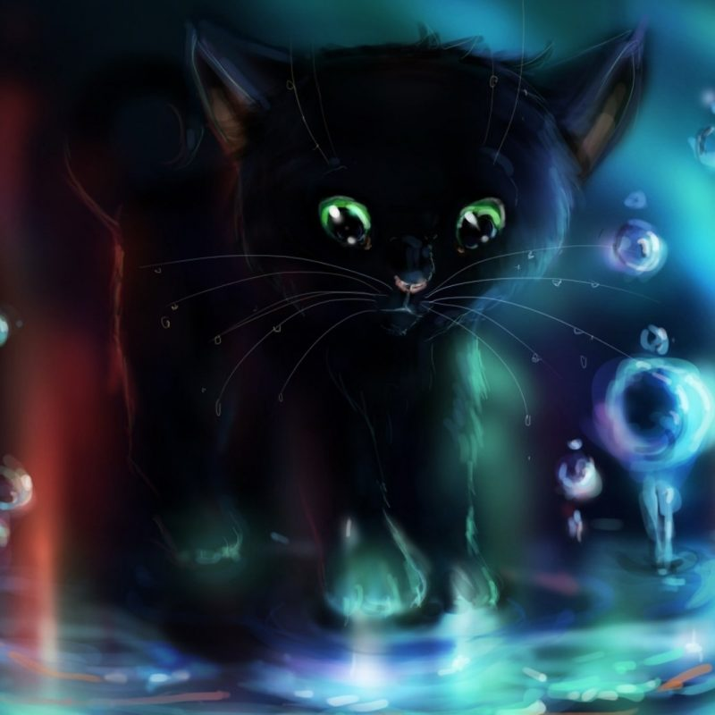 10 New Cute Halloween Kitten Wallpaper FULL HD 1080p For PC Desktop 2018 free download black kitten playing in the puddle wallpaper digital art 800x800