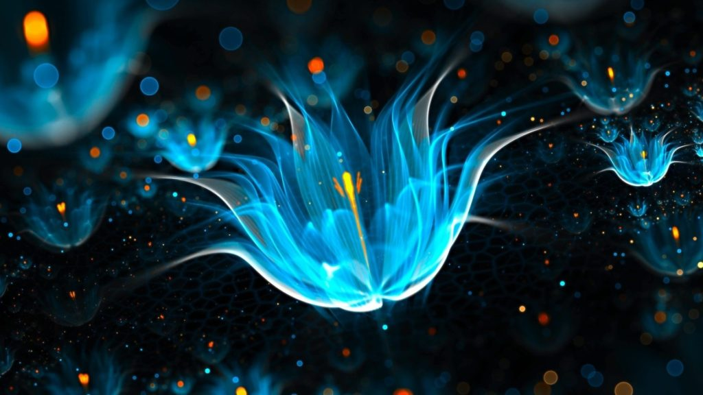 10 New Neon Blue And Black Backgrounds FULL HD 1080p For PC Desktop 2018 free download black neon wallpaper hd find best latest black neon wallpapers 1024x576