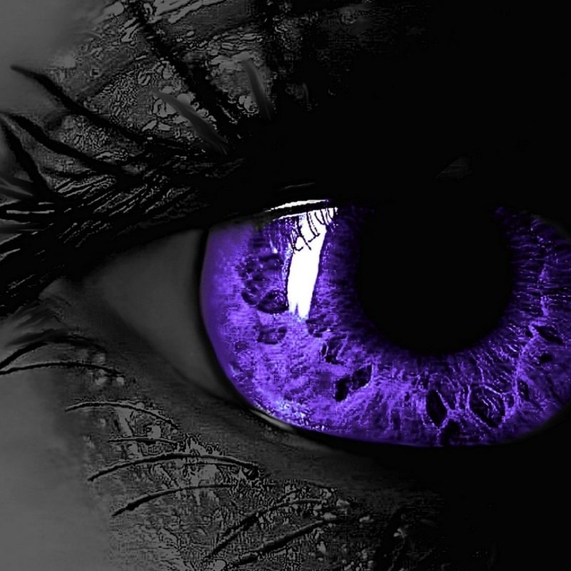 10 Best Black And Purple Wallpaper FULL HD 1920×1080 For PC Desktop 2021 free download black purple wallpaper 16616 baltana 800x800