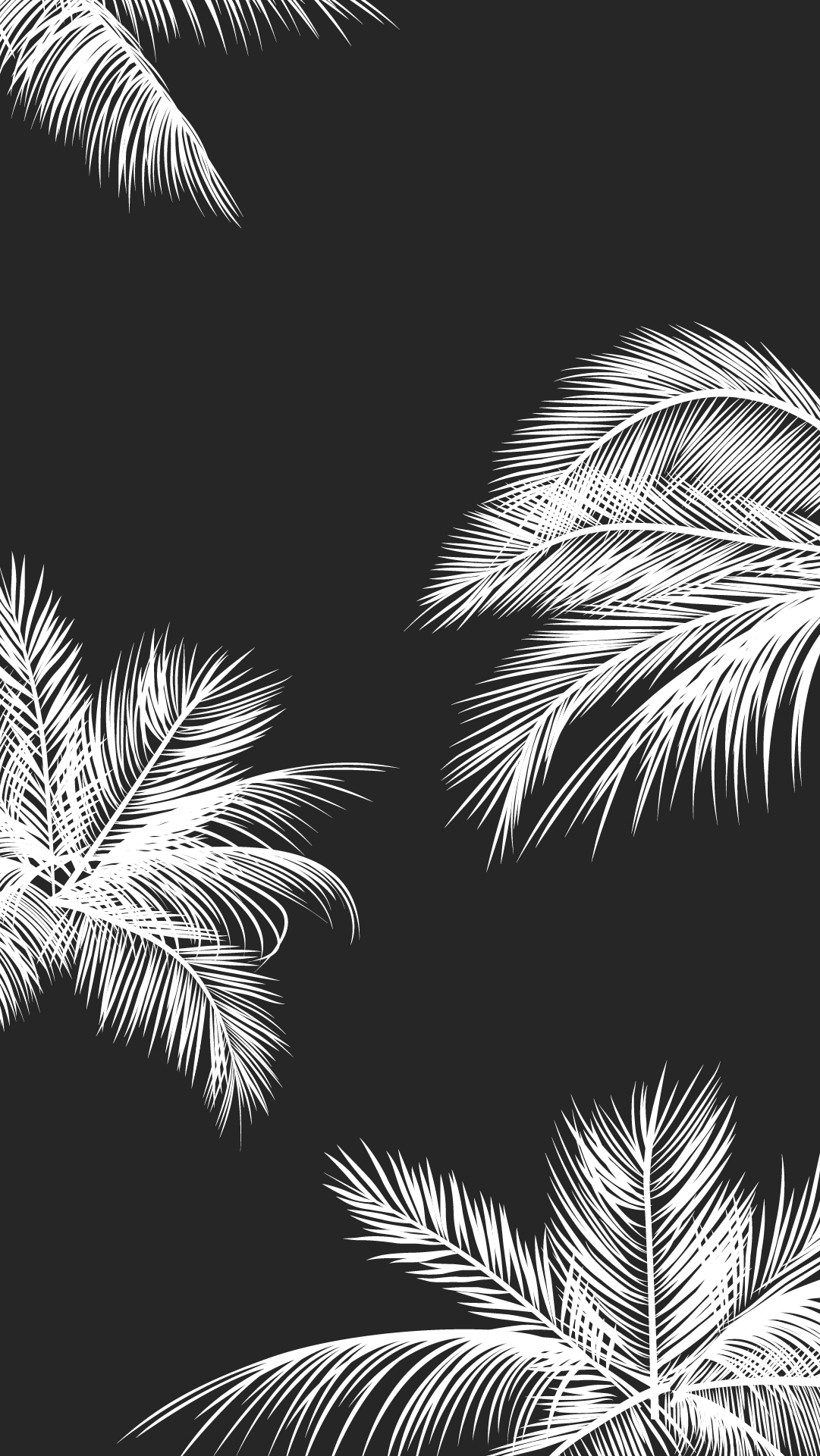 black white palm leaves palm trees like and repin. noelito flow
