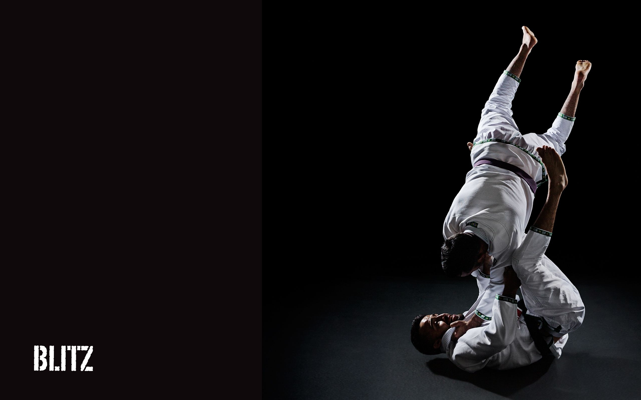 10 Best Brazilian Jiu Jitsu Wallpaper FULL HD 1080p For PC Desktop