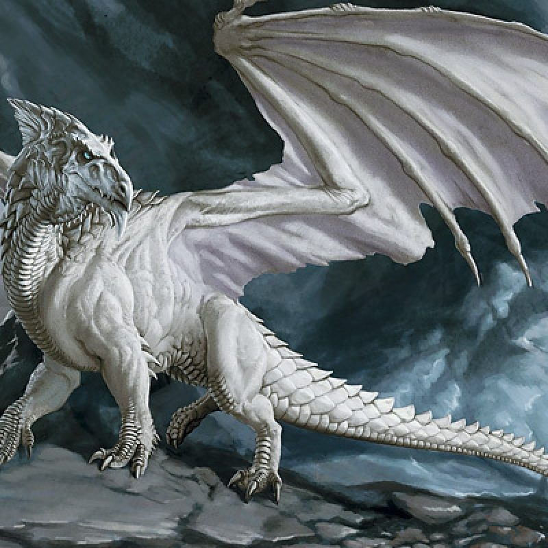 10 New White Dragon Wallpaper Widescreen FULL HD 1080p For PC Desktop 2018 Free Download Blue