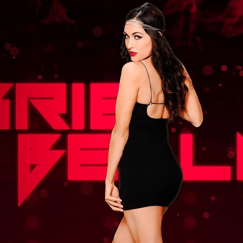 10 Best Wwe Nikki Bella Wallpaper FULL HD 1080p For PC Desktop 2018 free download brie bella custom entrance video heel youtube 800x800