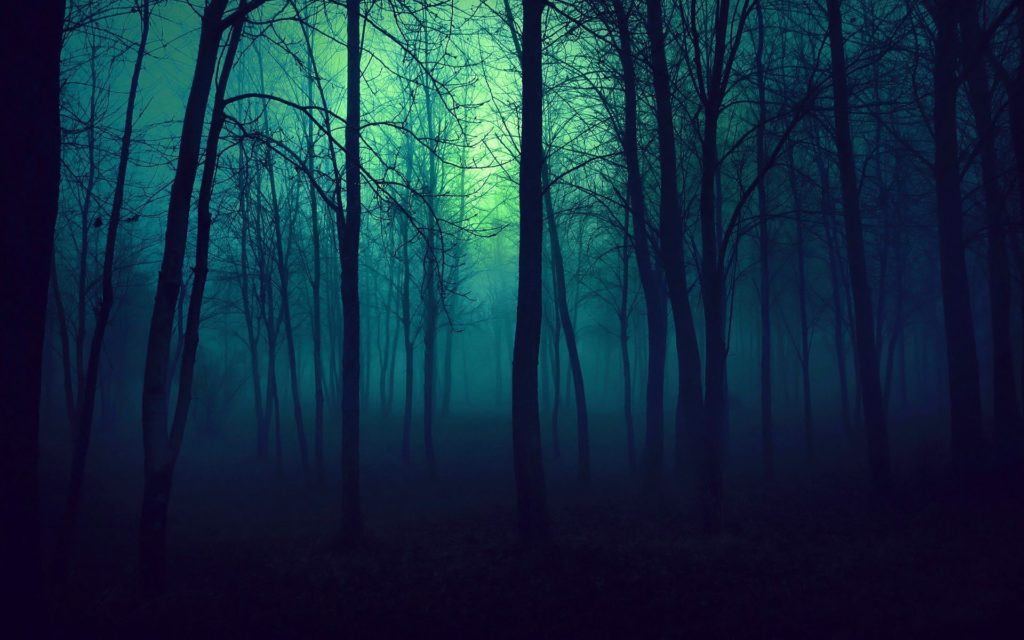 10 Top Dark Forest Background Tumblr FULL HD 1080p For PC Background 2020 free download brilliances i always follow back cigarette daydreams emerald 1024x640