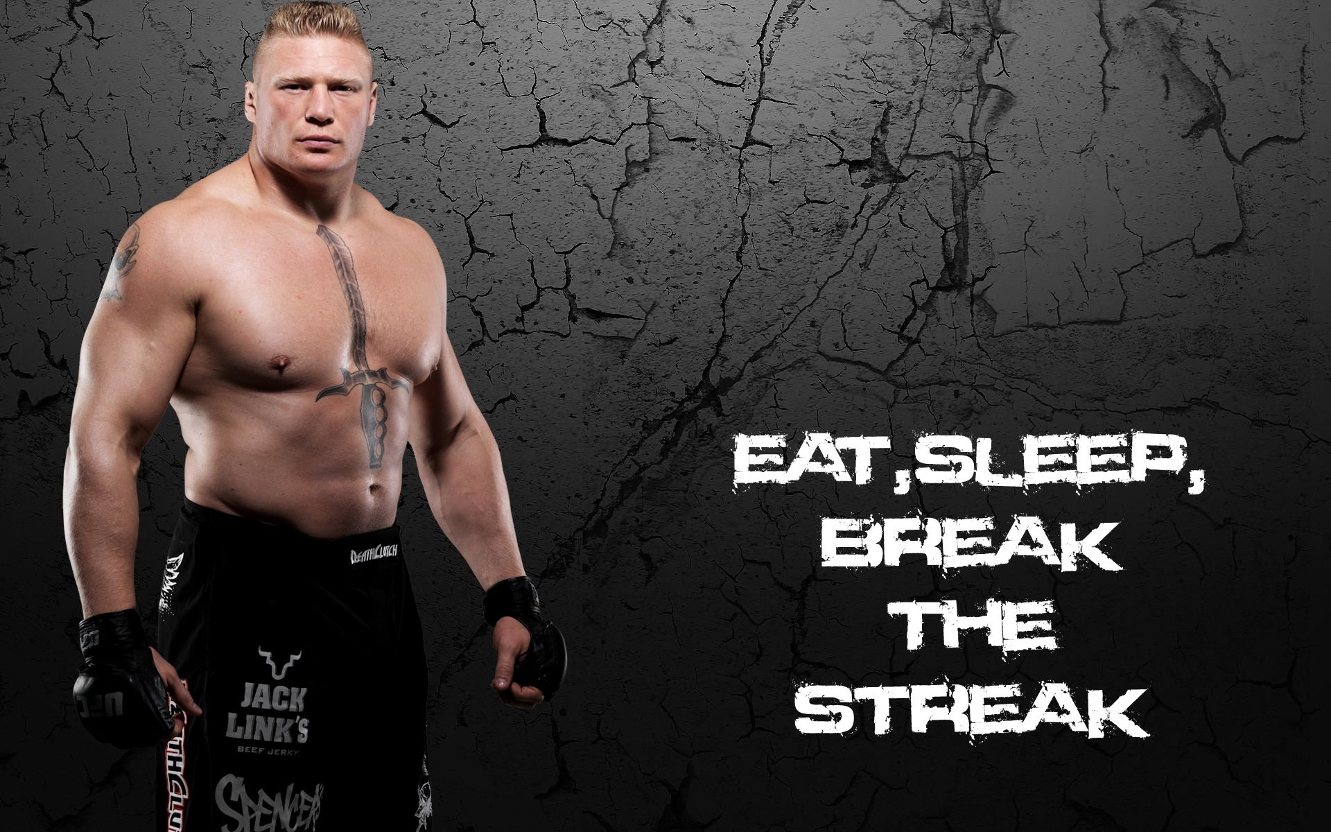 brock lesnar hd wallpapers 6 | brock lesnar hd wallpapers