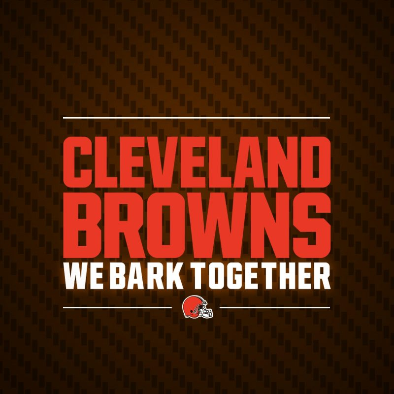 10 Top Cleveland Browns Hd Wallpaper FULL HD 1920×1080 For PC Background 2018 free download browns wallpapers cleveland browns 2 800x800