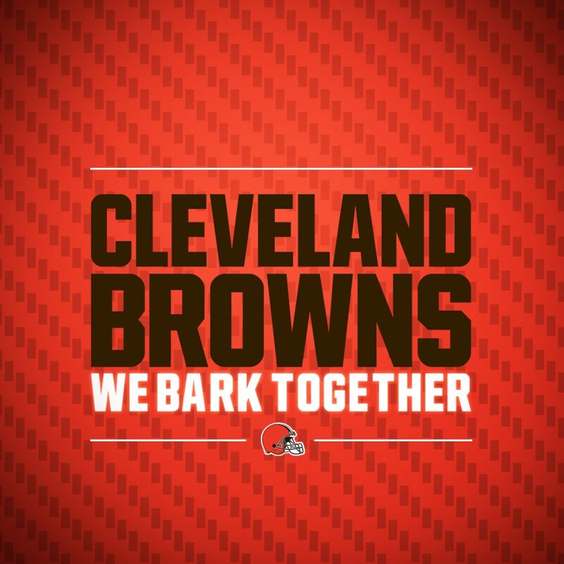 10 Top Cleveland Browns Hd Wallpaper FULL HD 1920×1080 For PC Background 2018 free download browns wallpapers cleveland browns 3 800x800
