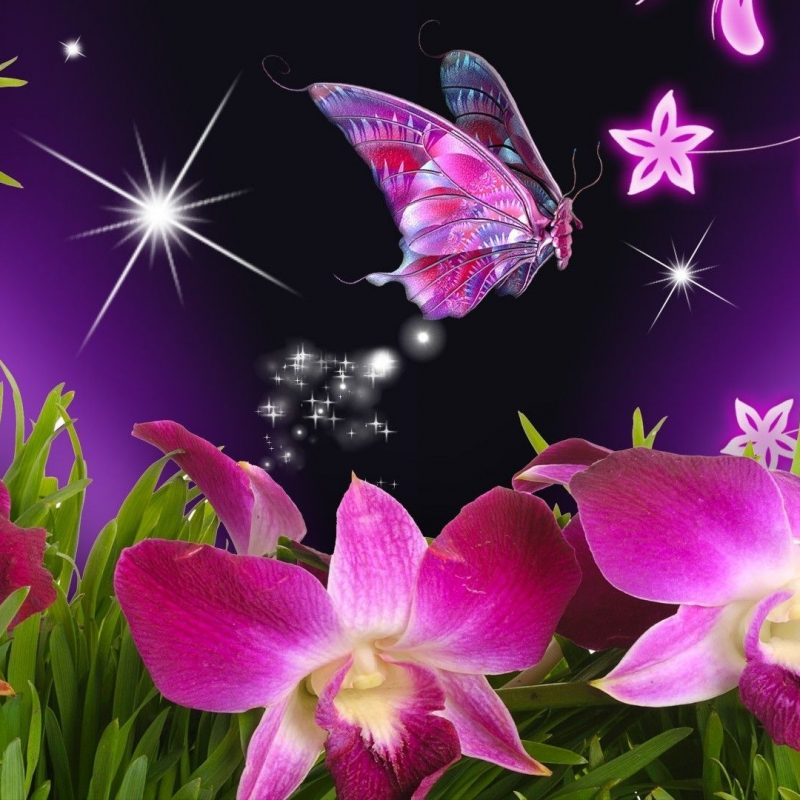 10 Top Butterfly With Flowers Wallpapers FULL HD 1920×1080 For PC Desktop 2018 free download butterflies and flowers butterfly flowers orchid purple stars 1 800x800