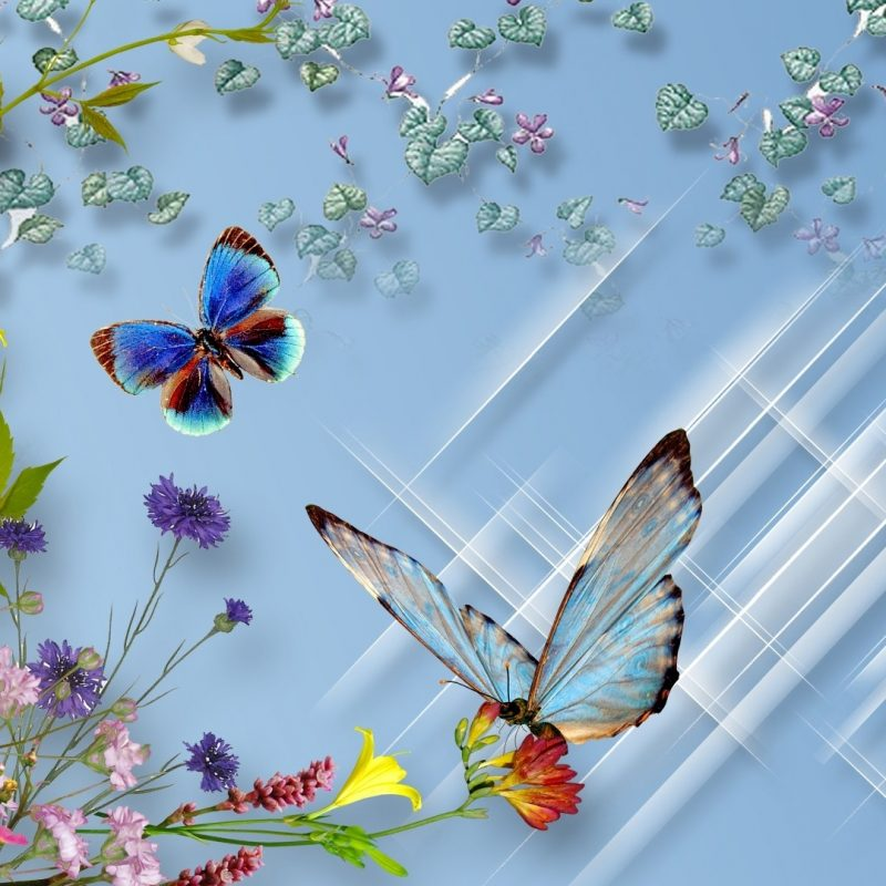 10 Latest Flowers With Butterfly Wallpaper Hd FULL HD 1080p For PC Desktop 2018 free download butterflies and flowers full hd wallpaper and background image 1 800x800