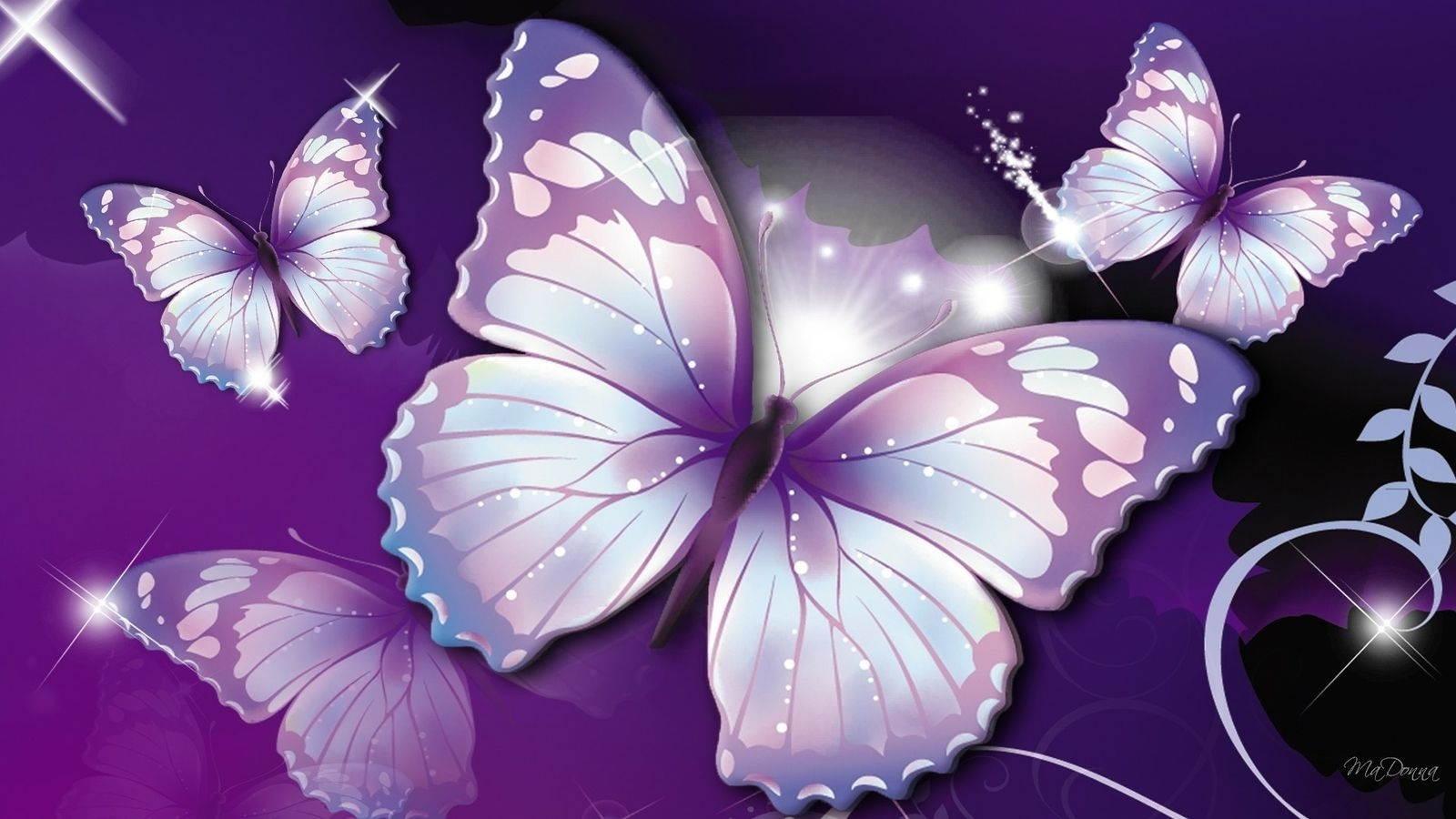 10 Best Wallpaper Butterfly Free Download FULL HD 1920×1080 For PC Desktop
