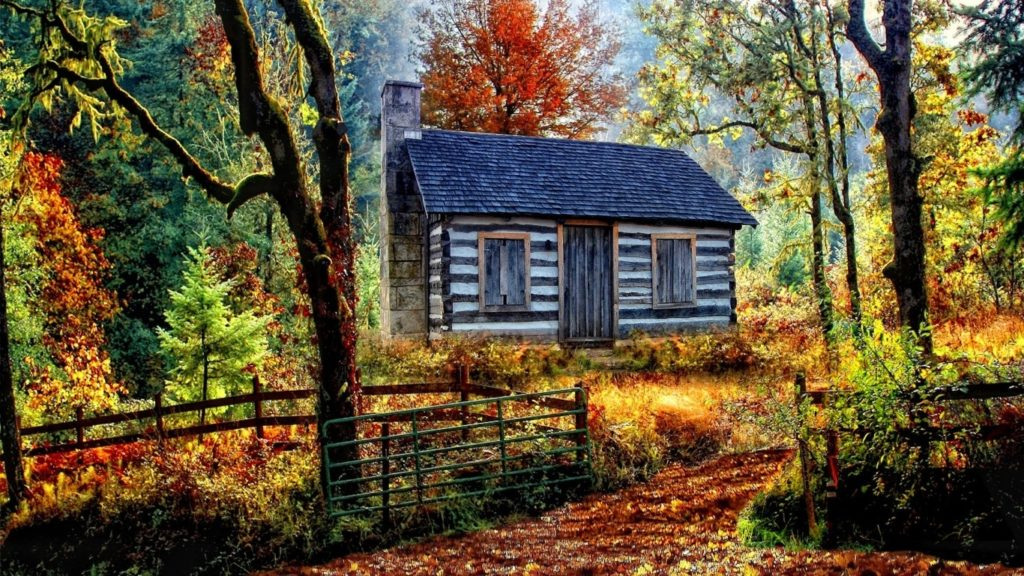 10 Top Cabin In The Woods Wallpaper FULL HD 1080p For PC Background 2018 free download cabin in the woods wallpaper and background image 1366x768 id 1024x576