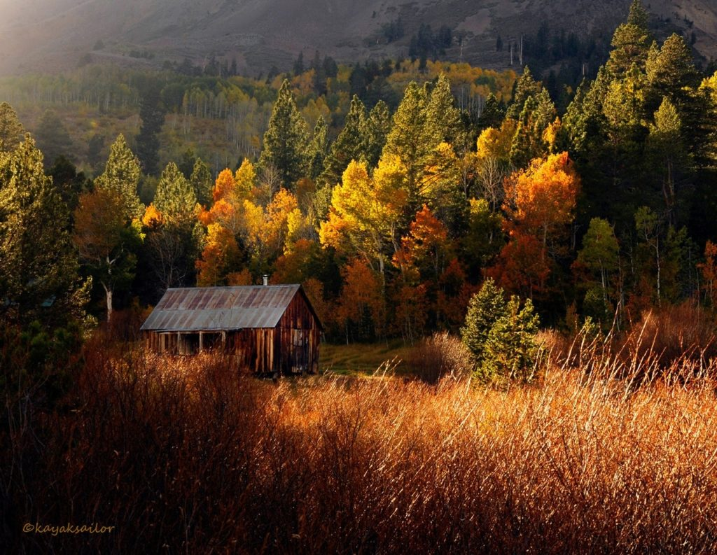 10 Top Cabin In The Woods Wallpaper FULL HD 1080p For PC Background 2021 free download cabin in the woodskayaksailor on deviantart 1024x793