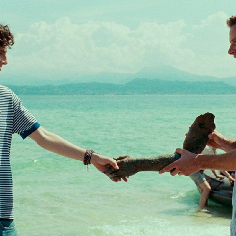 10 Best Call Me By Your Name Wallpaper FULL HD 1920×1080 For PC Desktop 2018 free download call meyour name wallpapers wallpaper cave 800x800