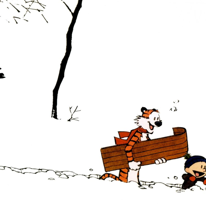 10 Best Calvin And Hobbes Hd Wallpaper FULL HD 1080p For PC Background 2018 free download calvin and hobbes winter e29da4 4k hd desktop wallpaper for 4k ultra hd 800x800