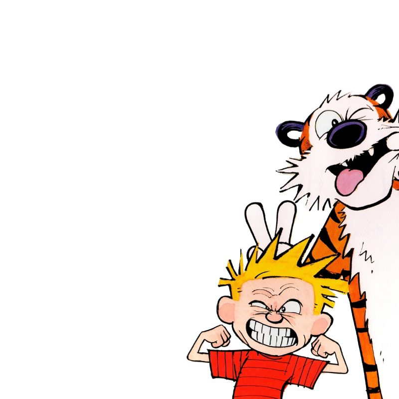 10 Best Calvin And Hobbes Hd Wallpaper FULL HD 1080p For PC Background 2018 free download calvin et hobbes full hd fond decran and arriere plan 1920x1200 800x800
