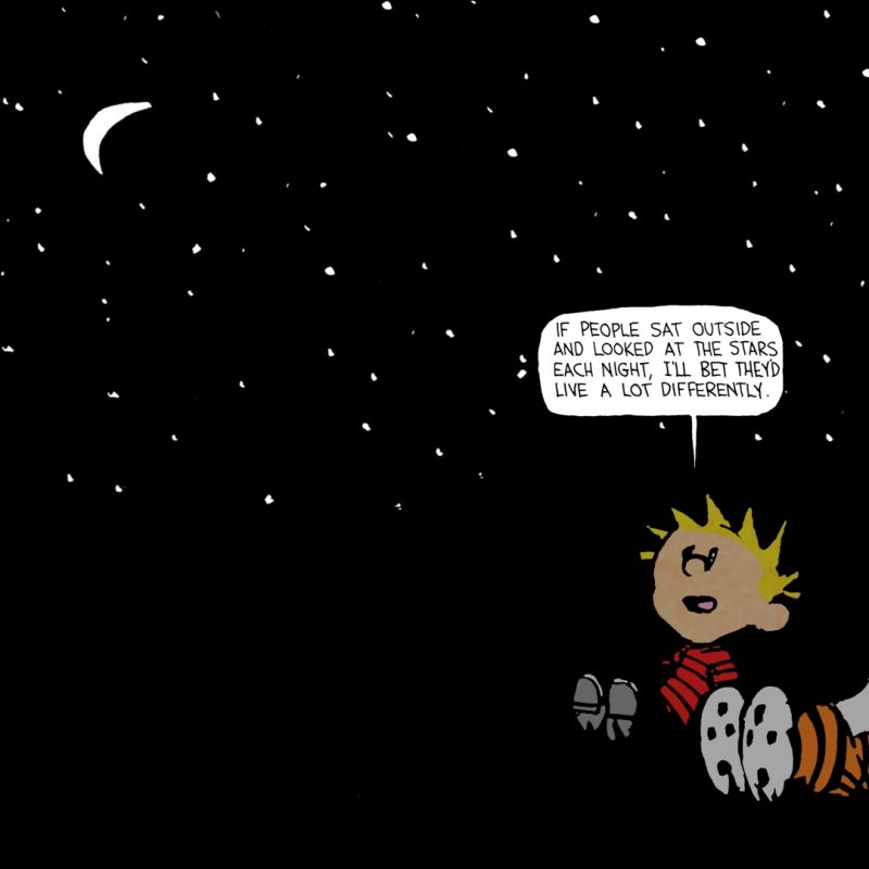10 New Calvin And Hobbes Wallpaper Quote FULL HD 1920×1080 For PC Background 2020 free download calvin hobbes stars quote google search all pinterest star 1 800x800