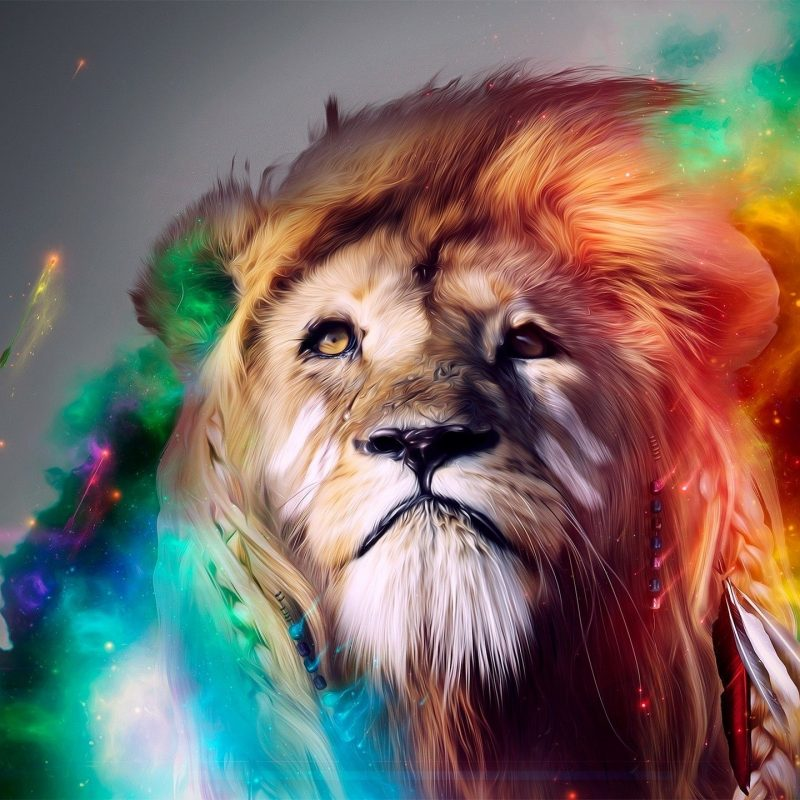 10 New Cool Backgrounds Of Animals FULL HD 1080p For PC Background 2018 free download candy world background buscar con google animals pinterest 800x800