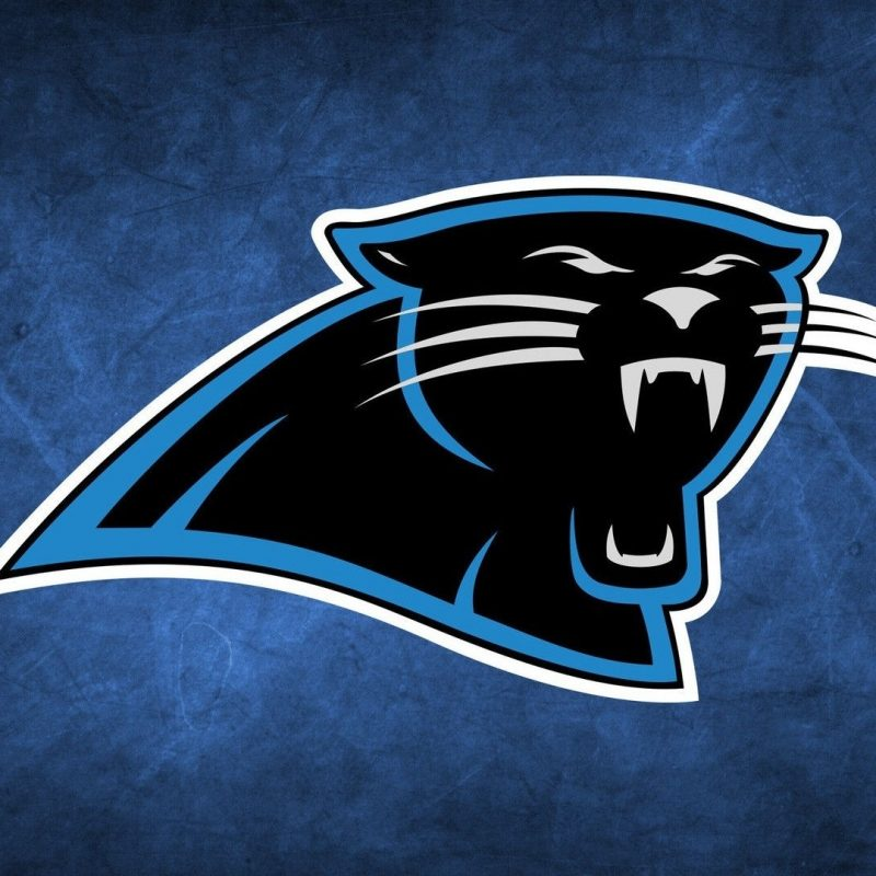 10 New Nfl Football Teams Wallpaper FULL HD 1920×1080 For PC Background 2020 free download carolina panthers nfl football team hd widescreen wallpaper 800x800