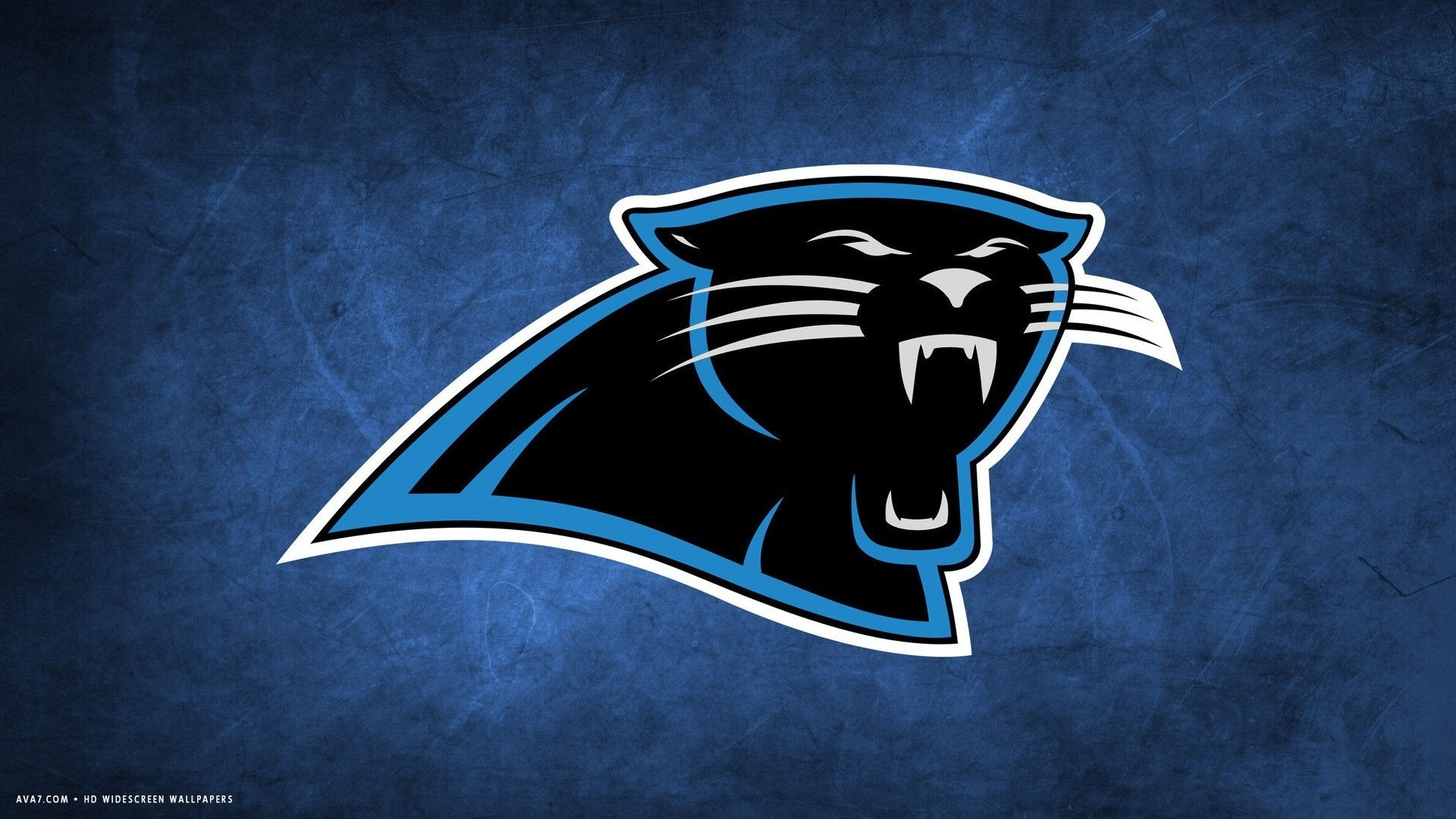 carolina panthers nfl football team hd widescreen wallpaper