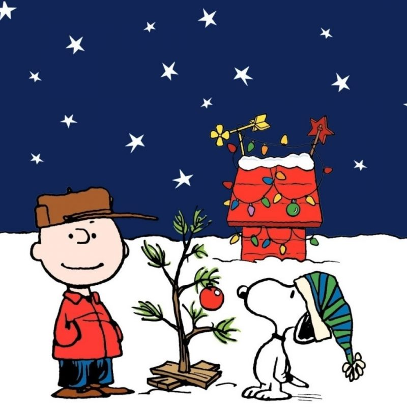 10 Best Charlie Brown Christmas Tree Wallpaper FULL HD 1920×1080 For PC Background 2018 free download charlie brown christmas tree wallpapers group 56 800x800