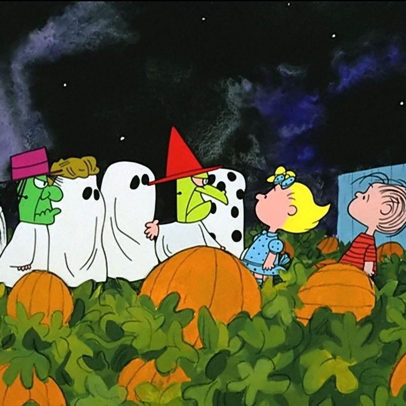 10 Top Charlie Brown Halloween Wallpaper FULL HD 1080p For PC Background 2020 free download charlie brown halloween wallpapers wallpaper cave 800x800