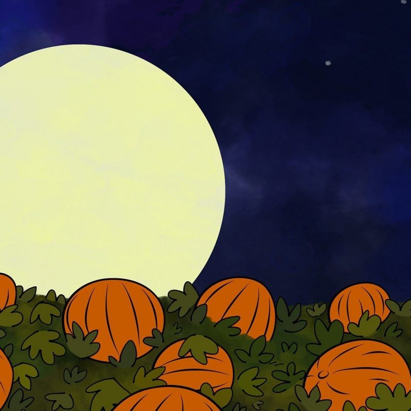 10 Top Charlie Brown Halloween Wallpaper FULL HD 1080p For PC Background 2020 free download charlie brown pumpkin patch wallpaper google search graphic art 800x800