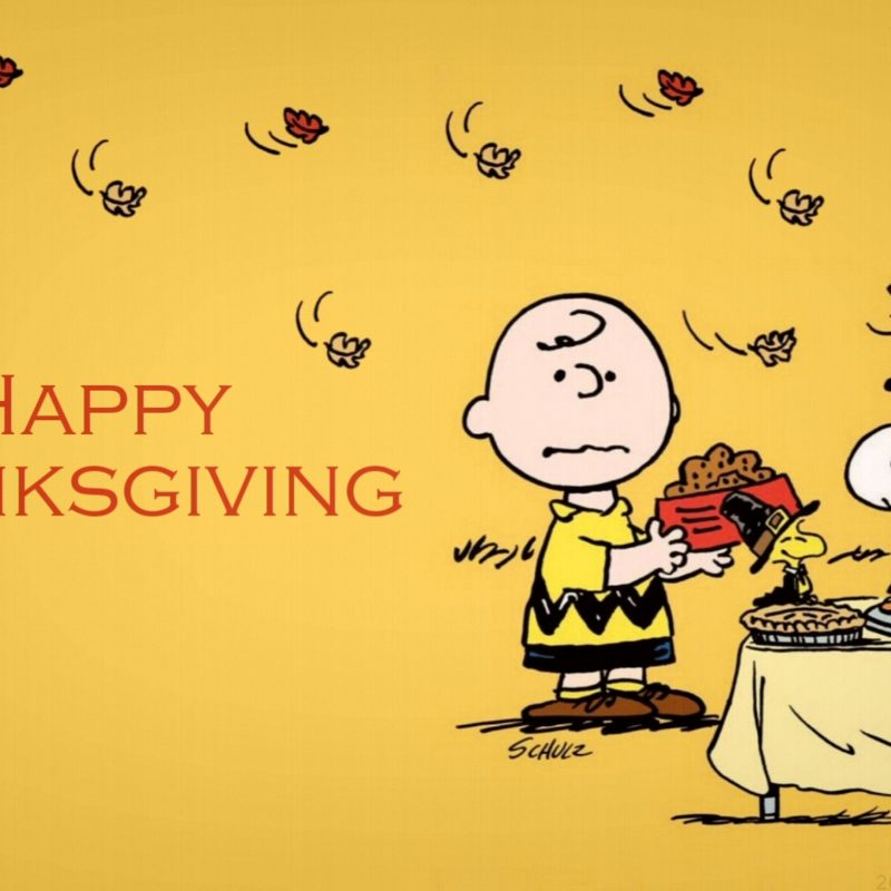 10 Latest Happy Thanksgiving Charlie Brown Wallpaper FULL HD 1920×1080 For PC Background 2018 free download charlie brown thanksgiving 4k wallpaper free 4k wallpaper 800x800