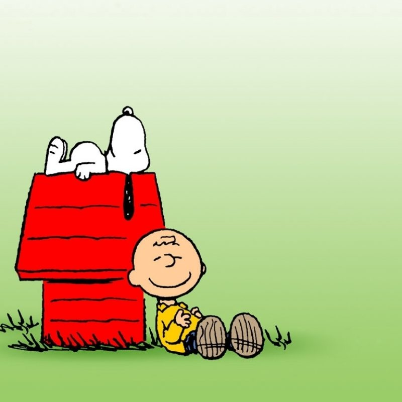 10 New Free Charlie Brown Wallpapers FULL HD 1080p For PC Background 2018 free download charlie brown wallpaper 14845 1024x768 px hdwallsource 800x800
