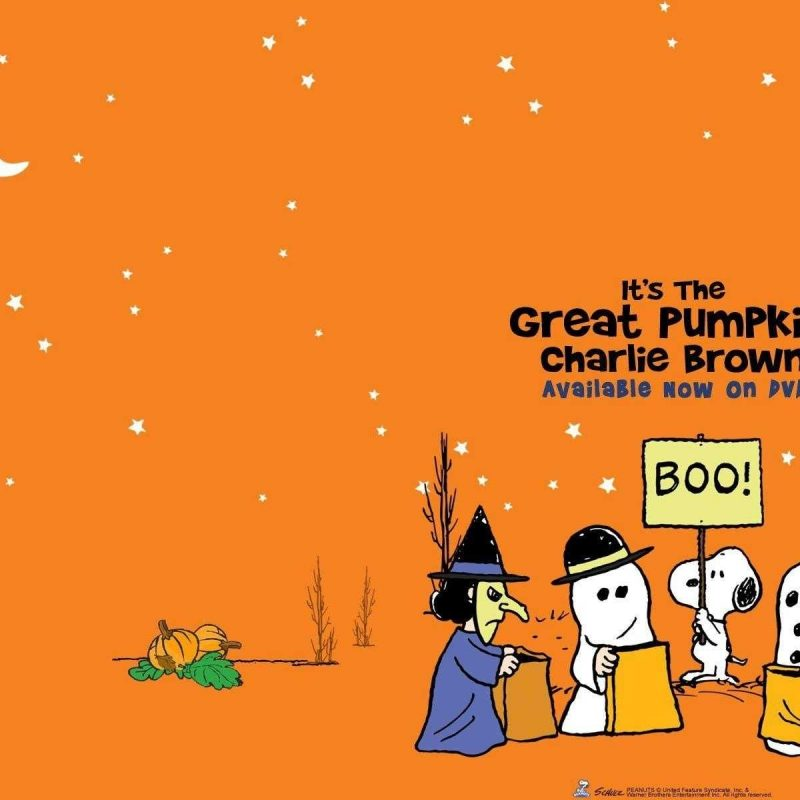 10 Latest The Great Pumpkin Wallpaper FULL HD 1920×1080 For PC Background 2018 free download charlie brown wallpaper high quality hd great pumpkin of androids 800x800