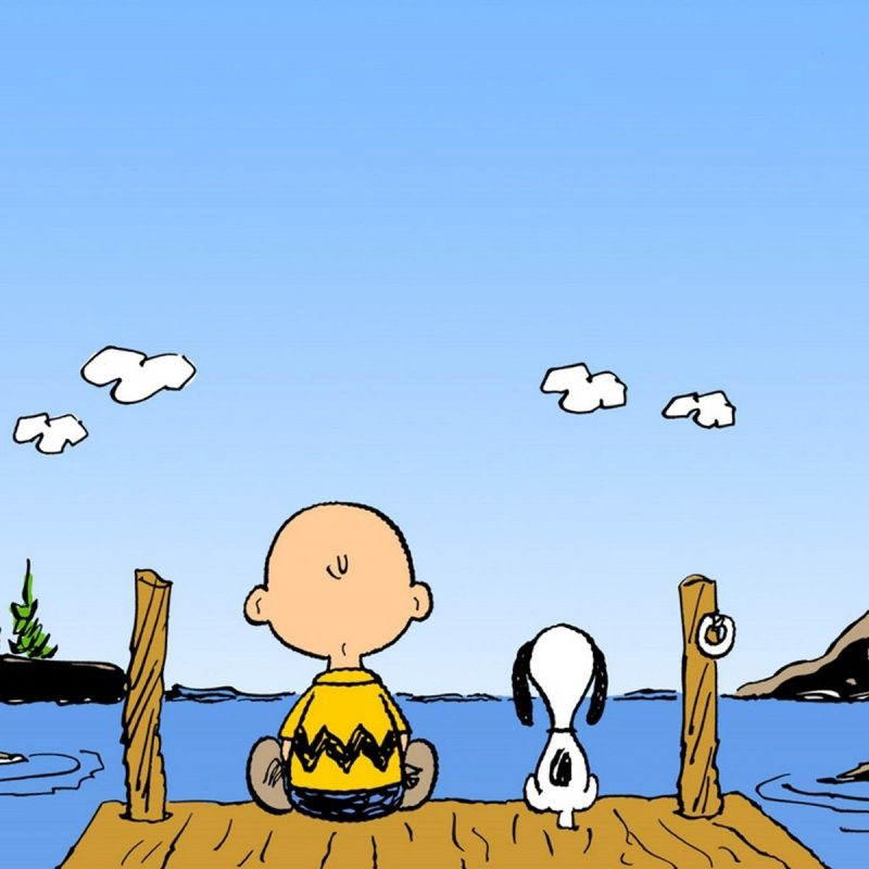 10 New Free Charlie Brown Wallpapers FULL HD 1080p For PC Background 2018 free download charlie brown wallpapers group 67 800x800