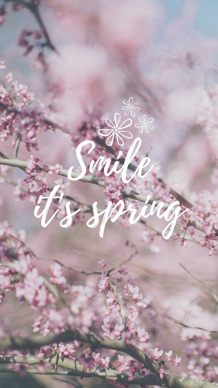 cherry blossom iphone wallpaper collection | Écran, fond ecran et