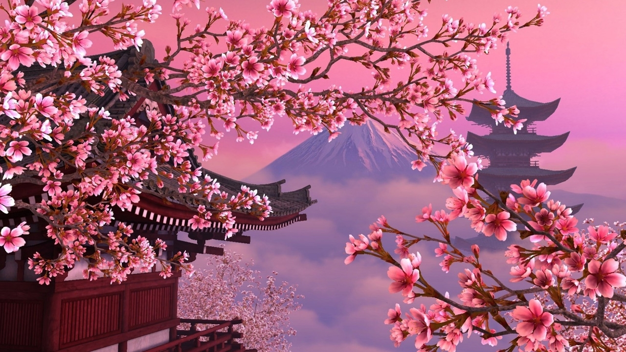 cherry blossom wallpaper - bdfjade